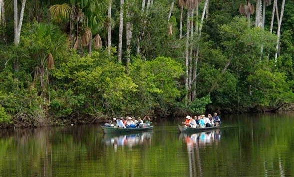 Discover the Madre de Dios River of Peru By Boat