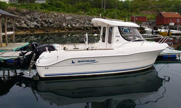 21 ft Quicksilver Pilothouse Fishing Charter for 4 People in Stonglandseidet, Norway