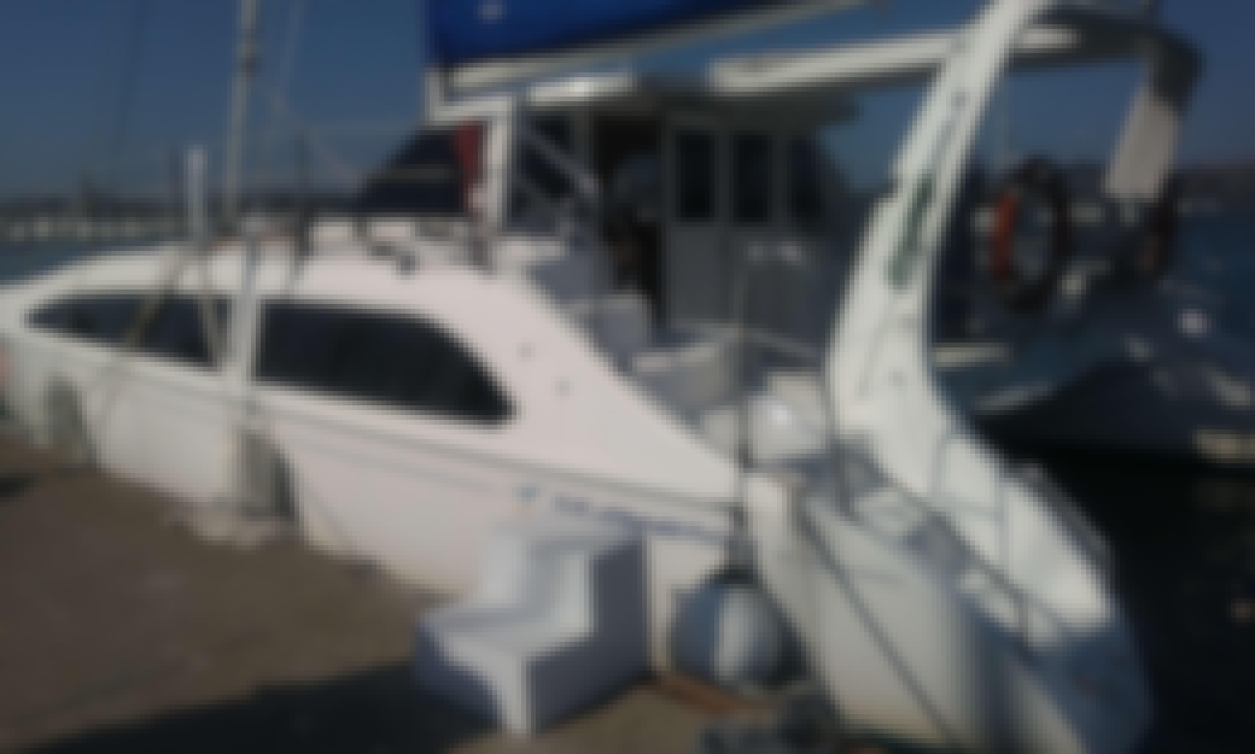 "Explore the San Francisco Bay on the Seawind 1160 Catamaran ""Vela Mare"" in Sausalito, CA"