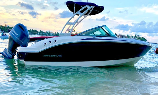 Powerboat Rental In Key Biscayne