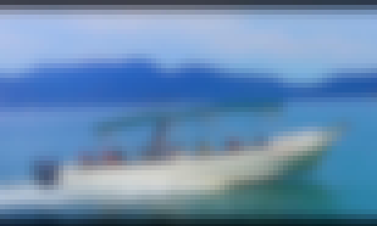 Taxi Boat Tour for 12 People to Ilha de Cataguás and ilha da Gipoia