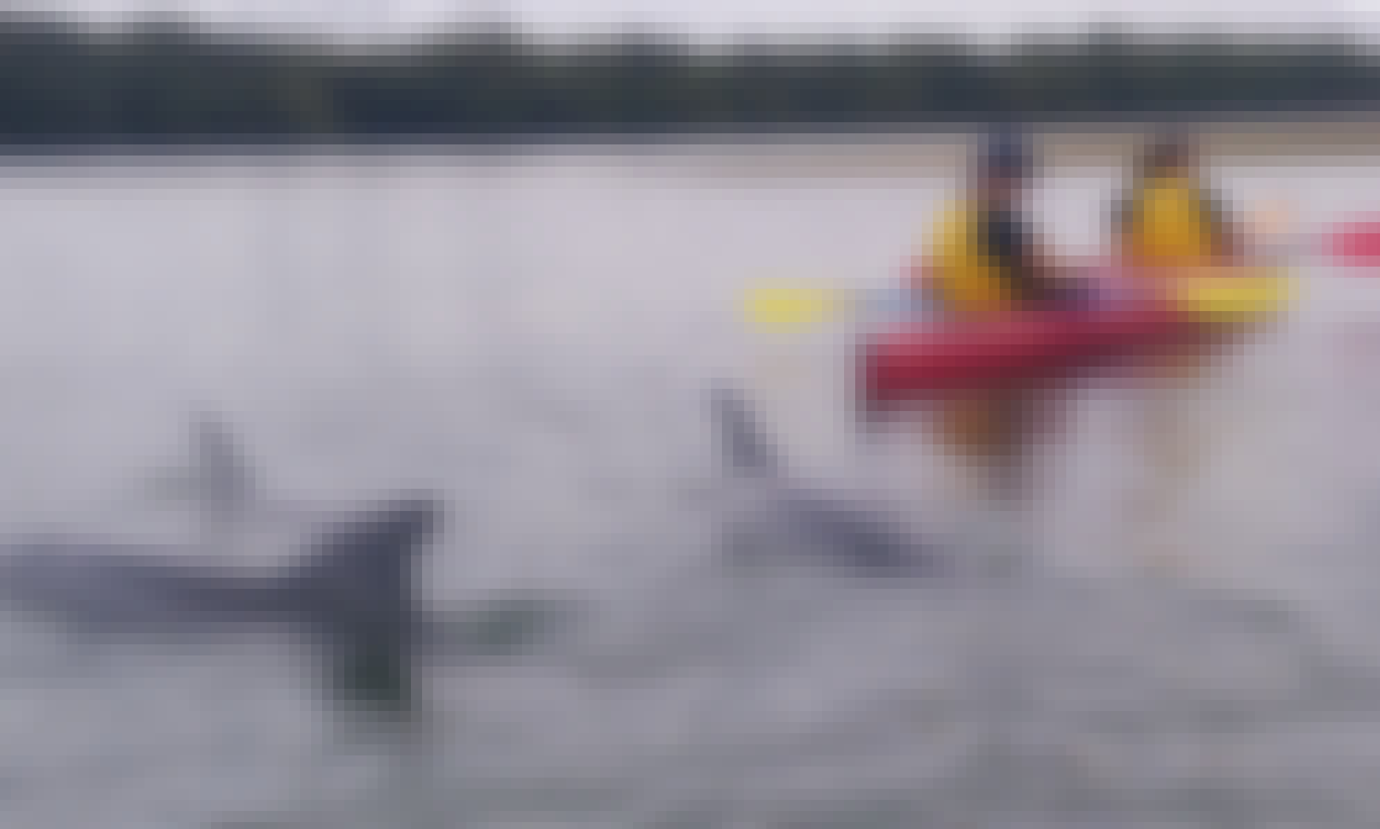 Adelaide Dolphin Sanctuary and Ships Graveyard Kayak hire