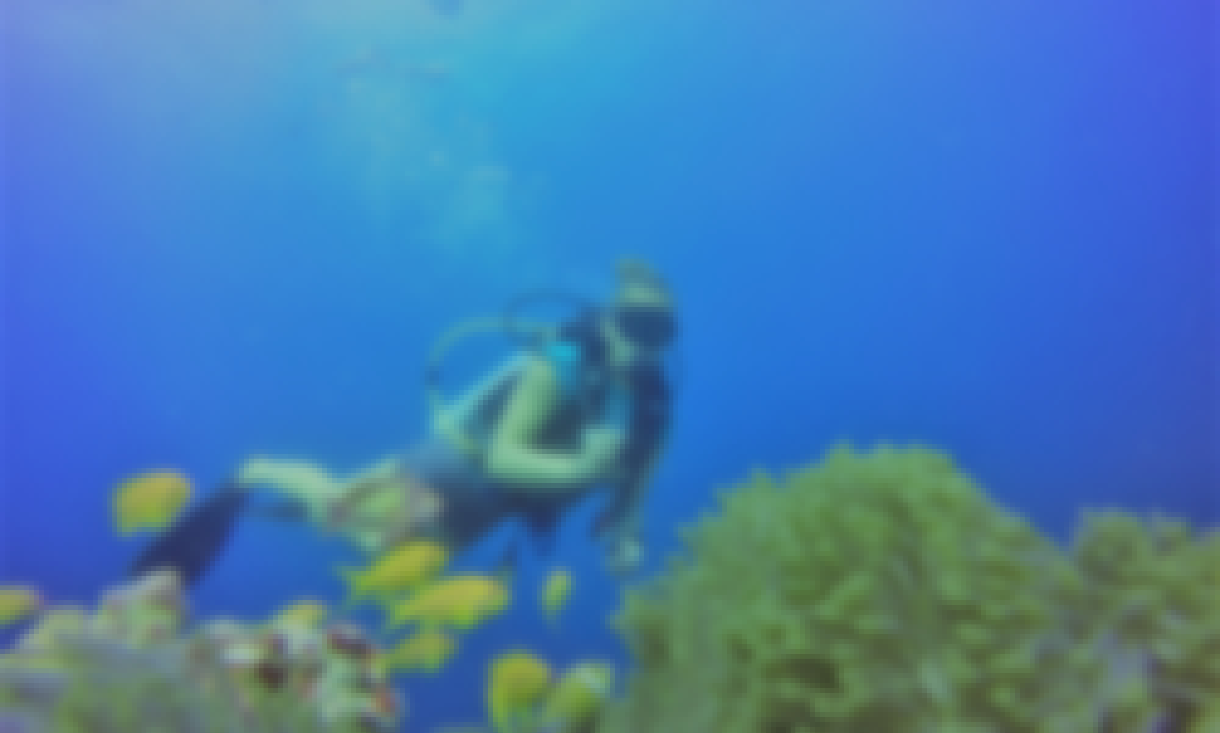 An Amazing Scuba Diving Experience for Up to 20 People in Maafushi, Maldives