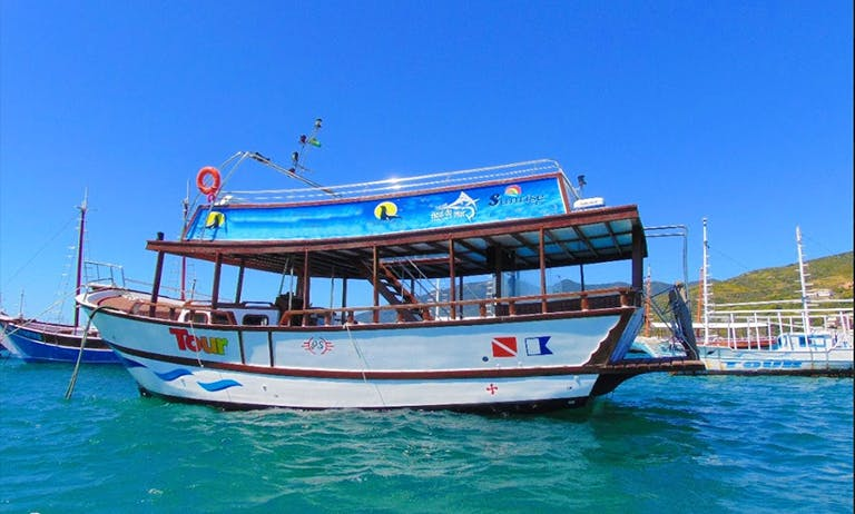 Exclusive Tour aboard the 2-Storey Boat in the Real BrazilIan Caribbean with Capitan Renato