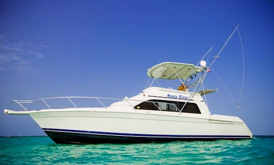 An Almost All Inclusive Fishing Charter In Punta Cana