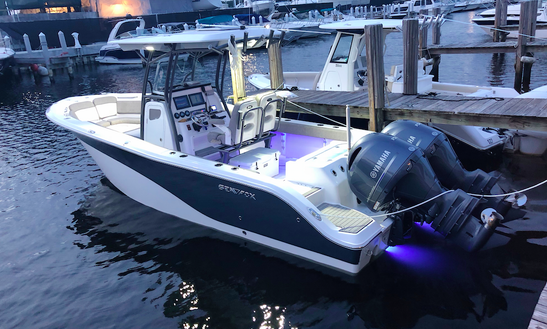 2018 Boat 26 Ft Boat Rental /  Daily Tours/sandbar/snorkel/ Dinner Tours/