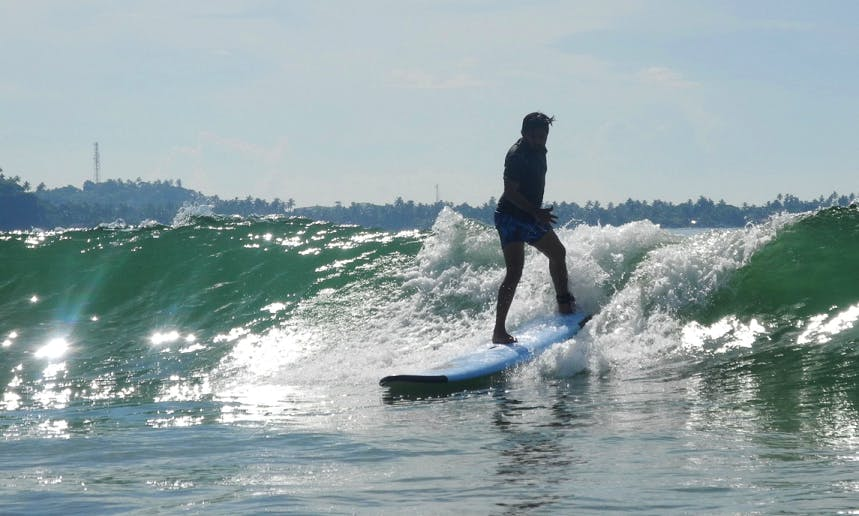 Enjoy Arugam Bay's Waves! Book a Surfing Lesson With Us!
