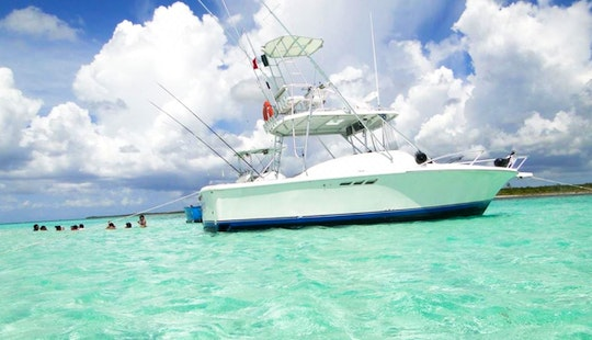 Thrilling Sportfishing Trip For 6 People In San Miguel De Cozumel, Mexico