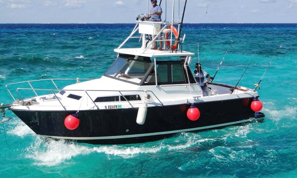 Exciting Fishing Trip for 4 People in San Miguel de Cozumel, Quintana Roo