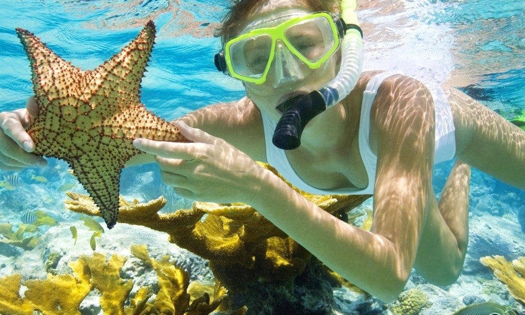 Snorkeling Key West