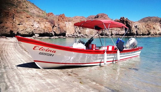 Exciting Fishing Trip On Mexican Panga Boat In Loreto, Baja California Sur