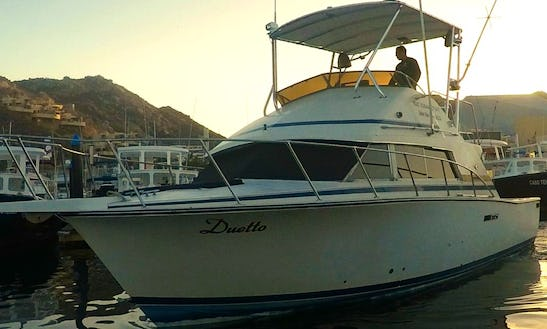 Charter A 36 Ft Duetto Fishing Boat For Up To 8 People In Cabo San Lucas, Mexico