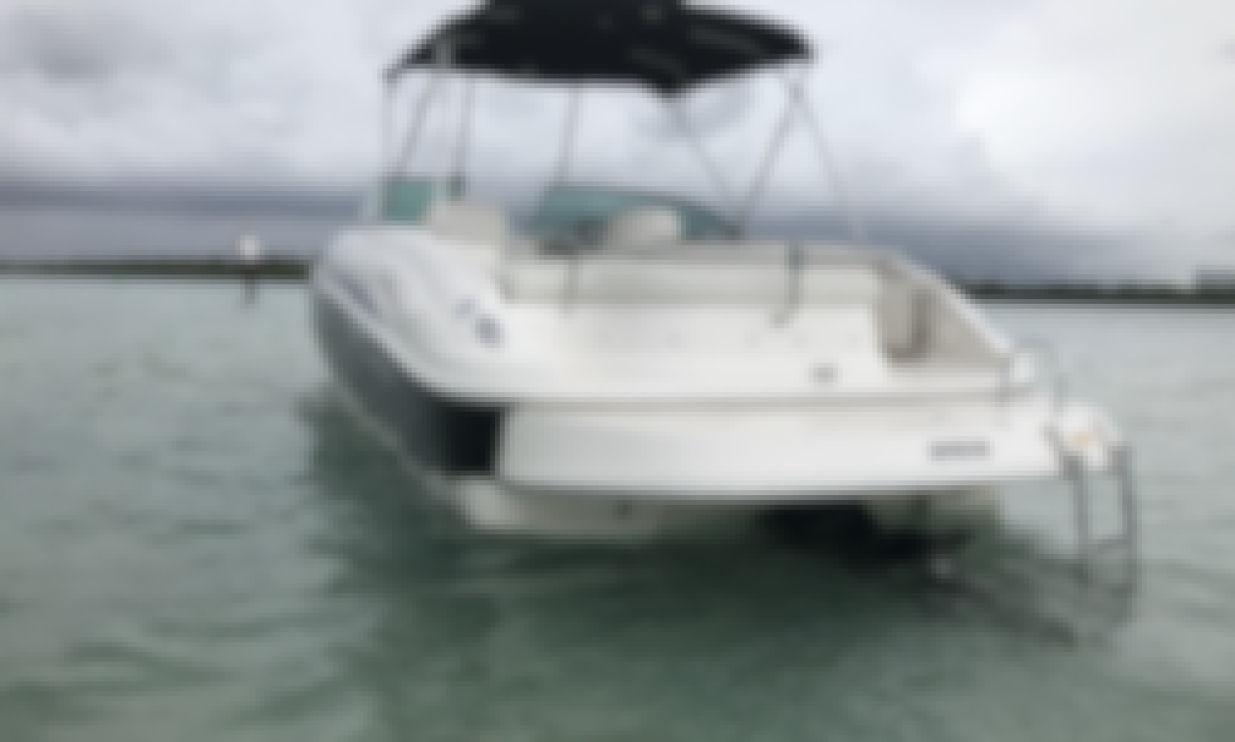 Perfect boat, lots of space, discounted for a limited time.
