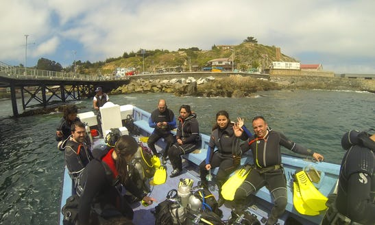 Begin Your Diving Adventure With Us!