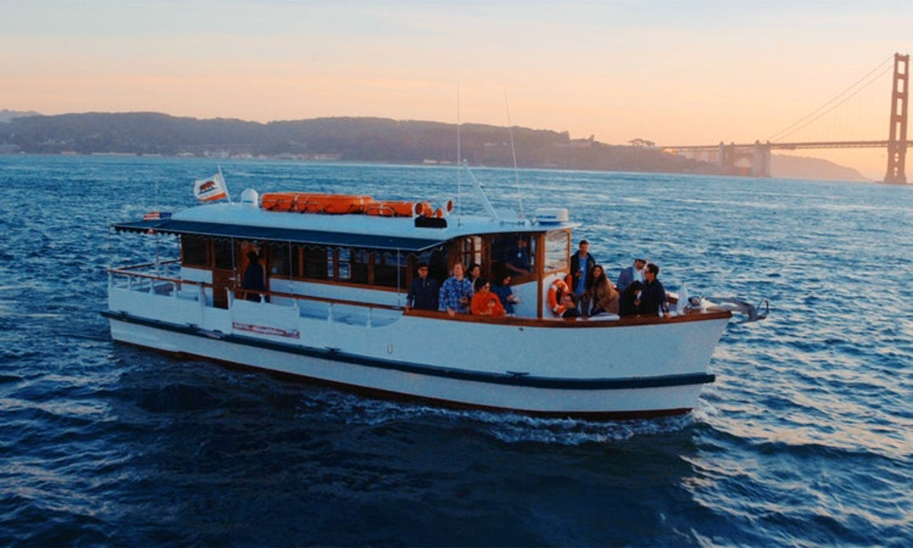 Bay Cruises