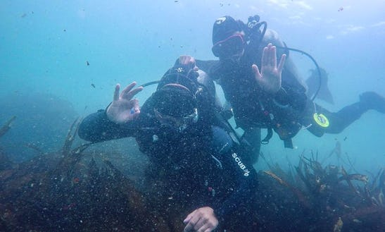 Learn Scuba Diving In Santiago, Chile With A Certified Instructor
