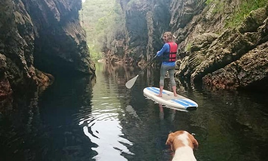 Guided Stand Up Paddleboard Outing In George Western Cape, South Africa