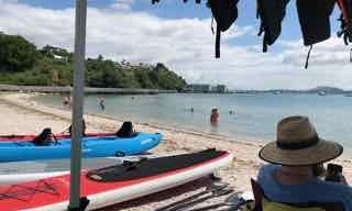 Sea and Sit on Top Kayak Hire In East Auckland Area