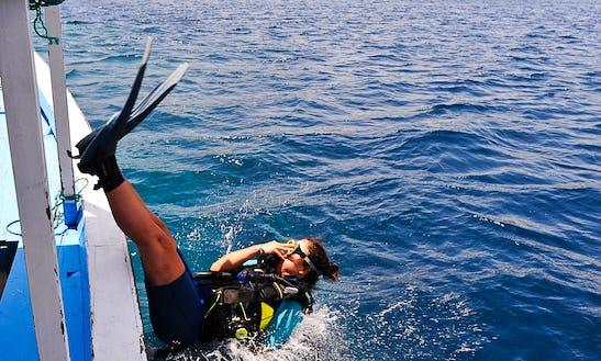 Padi Adventure Diver Course (1 Day)