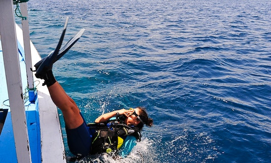 Padi Adventure Diver Course (1 Day)