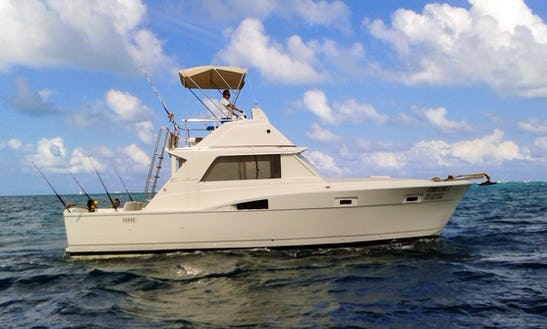 37' Chris Craft Fishing Charter For 8 People In Cancún, Mexico