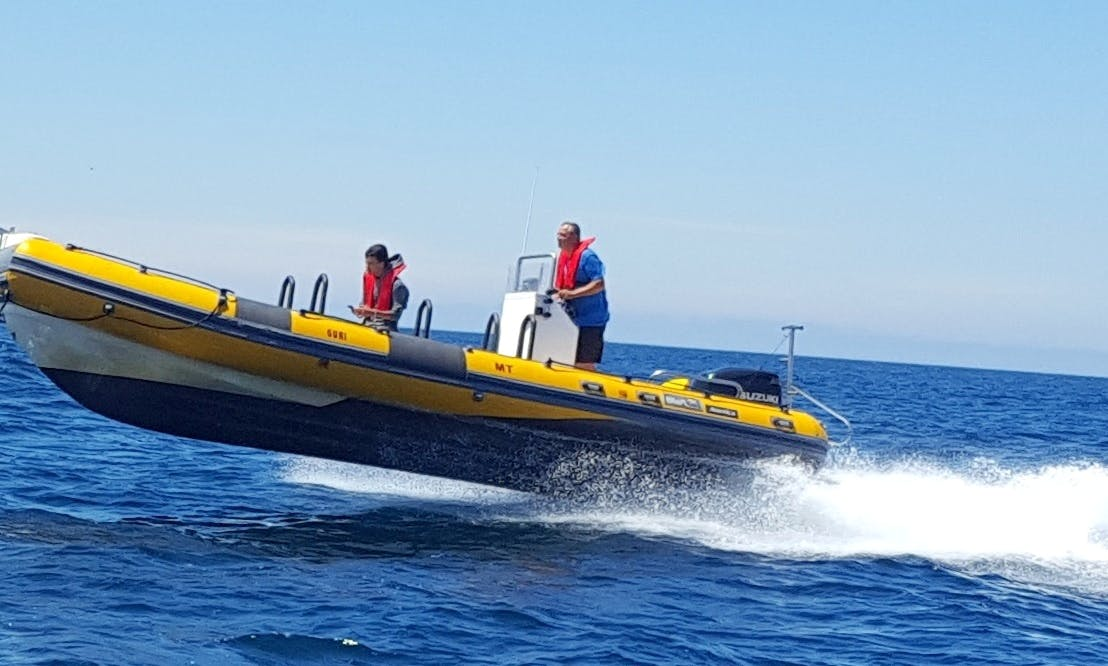 25 ft Bwa America RIB Rental for 14 People in Peniche, Portugal