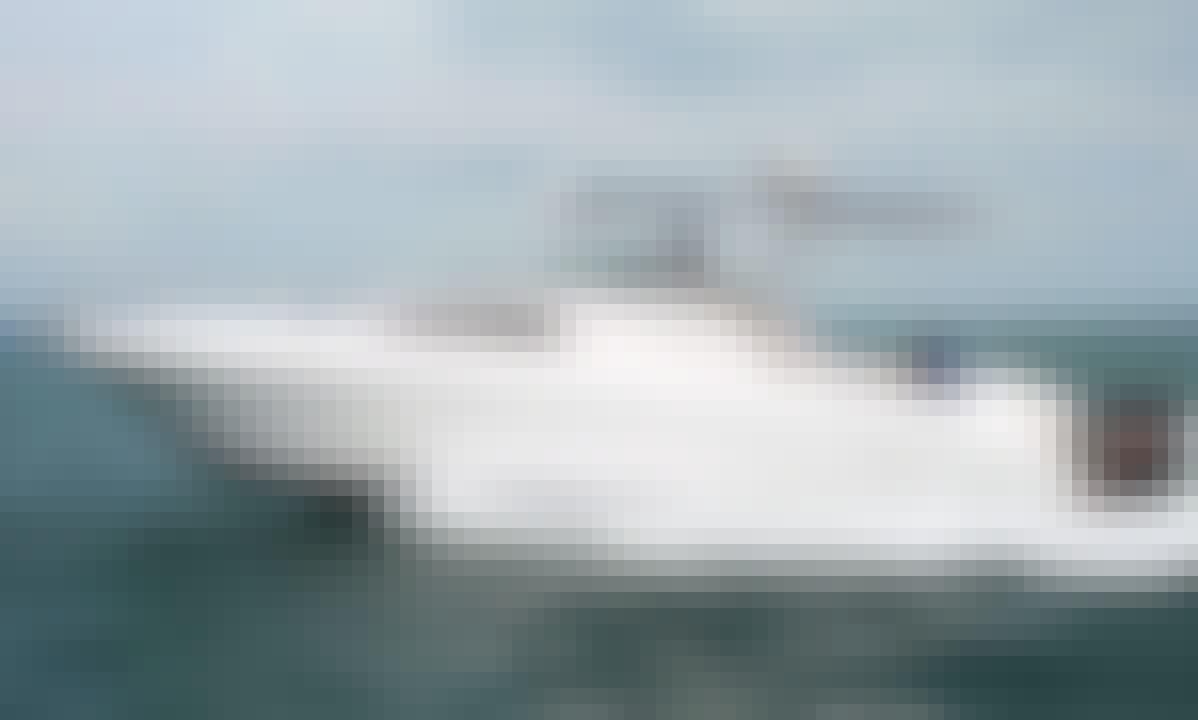 Luxury 24 foot Yacht rental in Dubai and Fishing Charter
