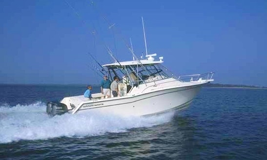 Grady White Marlin 300 Fishing Charter In Apalachicola, Florida