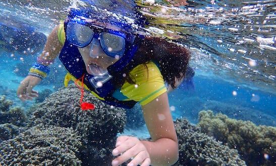Fantastic Snorkeling Trip In San Miguel De Cozumel, Mexico!