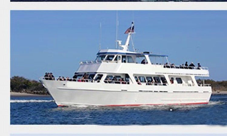 """Enjoy Whale Watching On 90ft """" American Star"""" Boat In Cape May, New Jersey"""
