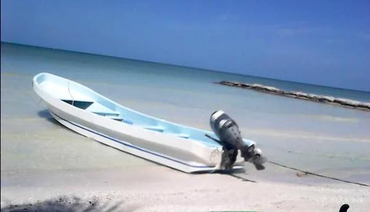 Mangrove River Tours In Holbox Island, Cancun