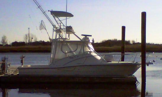 30' Sport Fisherman Charter In Marshfield, Massachusetts