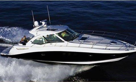 Searay Sundancer 50 Motor Yacht in Cancún