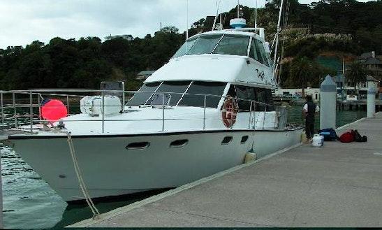 Hapuka, Xos Snapper, Kingfish, Marlin In Auckland