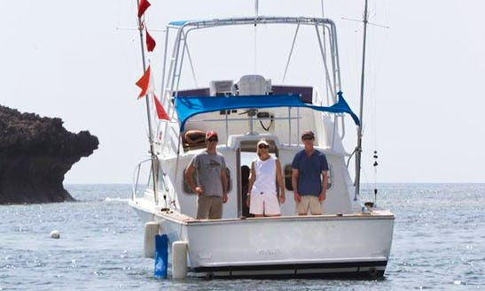 Sport Fisherman Rental For Up To 4 People In Watamu, Kenya