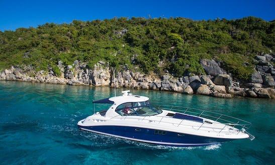 Charter 45' Sea Ray Motor Yacht In Us Virgin Islands