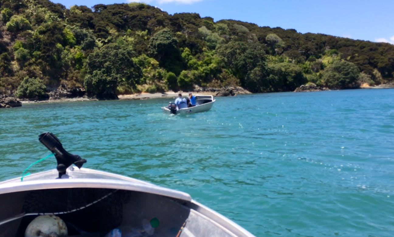 12' Dinghy for Mangonui Harbour and River - low cost Oars option
