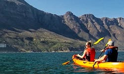 Take A Scenic Kayaking Excursion That You Won't Forget!