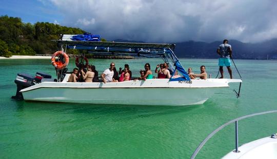 Exciting Reef Safari Boat Trip In Victoria, Seychelles