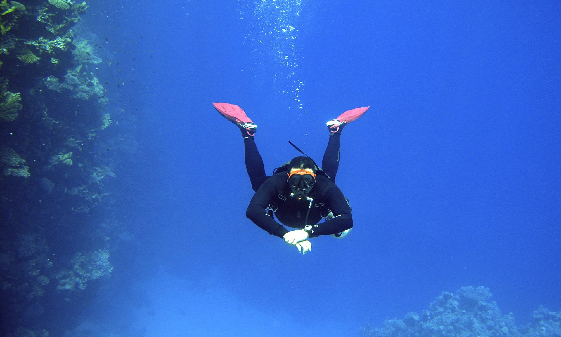 Dive & Enjoy It Till The Max With Us!