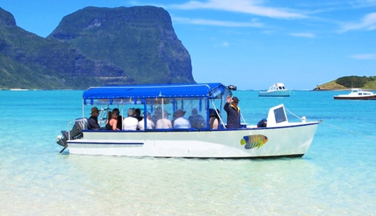 Boat Tours 'coral Empress' In Lord Howe Island