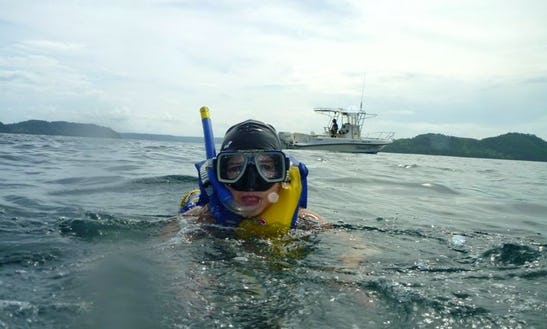 2 Hours Snorkeling Tour In Pelonas Island, Costa Rica