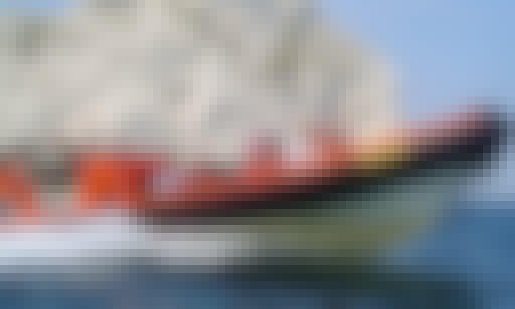 Speedboat Cruises In Christchurch