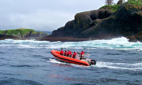 Volcano Coast Ocean Rafting  - 6 People In Sitka
