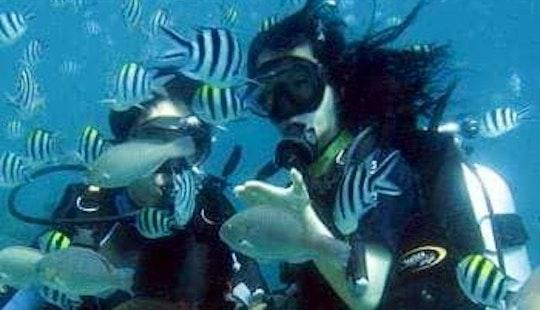 Incredible Scuba Diving Experience In Malvan, India!