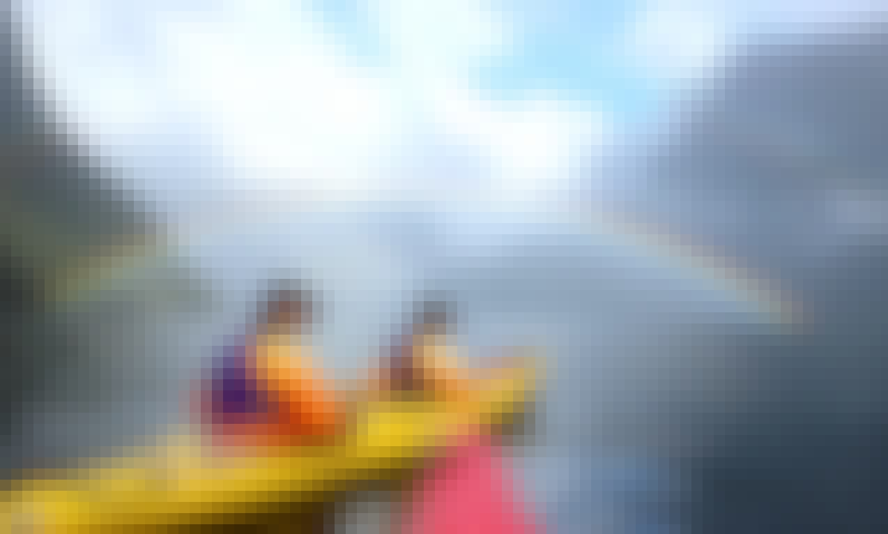 2 Hours Guided Kayak and Cruise in Milford Sound