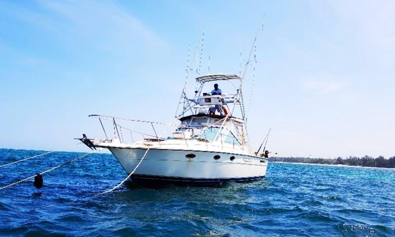 Tiara SST 31 Fishing Charter - 4 People in Mombasa County