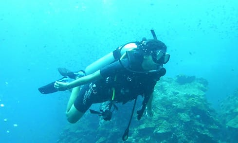 Enjoy Safety and Fun Diving With Us!