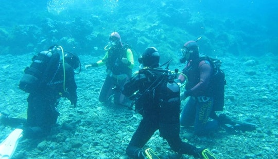 Diving Trip For Up To 15 People With Professional Guide In Ustica, Italy