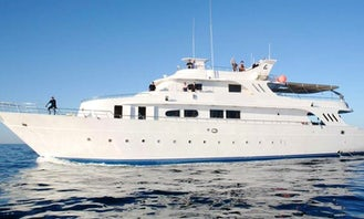 Charter 118' Power Mega Yacht in Safaga, Egypt